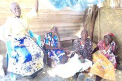 Diese älteren Damen sind auf das aktuelle Nahrungsversorgungsprogramm angewiesen.