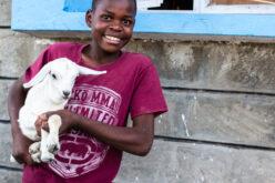 Strahlendes Kind mit Ziege auf dem Arm