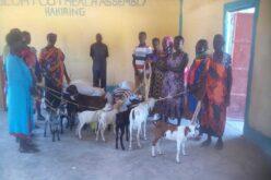 Eine Guppe von Menschen mit bunten Kleidern stehen zusammen. In der Bildmitte sind Ziegen zu sehen, dahinter liegen einige Säcke mit Nahrung.