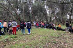 Hintergrund geprägt mit Laubbäumen. Vordergrund: Karger Waldboden, dazwischen eine Gruppe von Kinder und Jugendlichen, teil stehend, teils auf Baumstämmen sitzend.