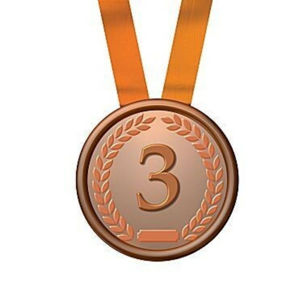 Bronze medaille 262694